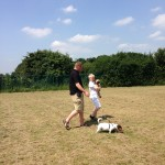 Harry and Poppy enjoying a walk - 6 July 2013